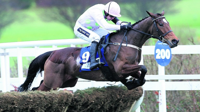 Let's Dance: favourite for the Grade 2 Trull House Stud Mares' Hurdle