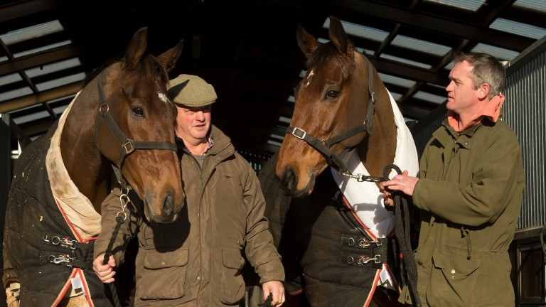 Cue Card (with Colin) and Thistlecrack (with Joe): this year's Gold Cup winner and next year's?