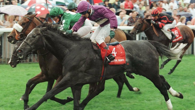 Ya Malak and Alex Greaves (green colours) dead-heat with Coastal Bluff in the Nunthorpe Stakes at York