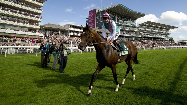 Frankel: dual world champion is the sire of the pricey Middle East