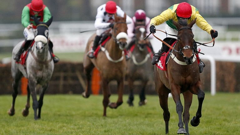 Finian's Oscar (red cap): five-year-old gelding bidding to give his sire yet another festival winner