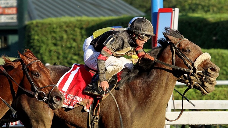 Shaman Ghost (nearside) wins the Woodward Stakes at Saratoga