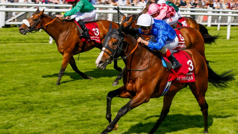 Belardo (white cap): won the Lockinge Stakes at the age of four last year