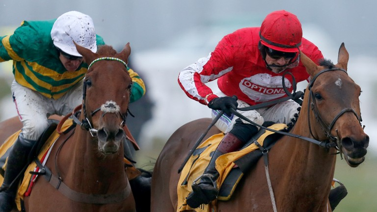 Ballyandy (right): gets the better of Movewiththetimes to land the Betfair Hurdle