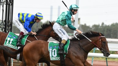 Humidor: lands the Australian Cup at Flemington by half a length from Jameka