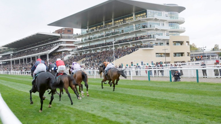 Cheltenham: going is good to soft
