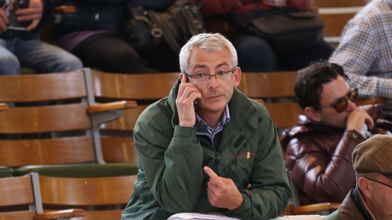 Anthony Bromley in action at Tattersalls' Autumn Horses In Training Sale