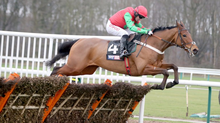 Neon Wolf: runner-up in the Neptune Novices' Hurdle