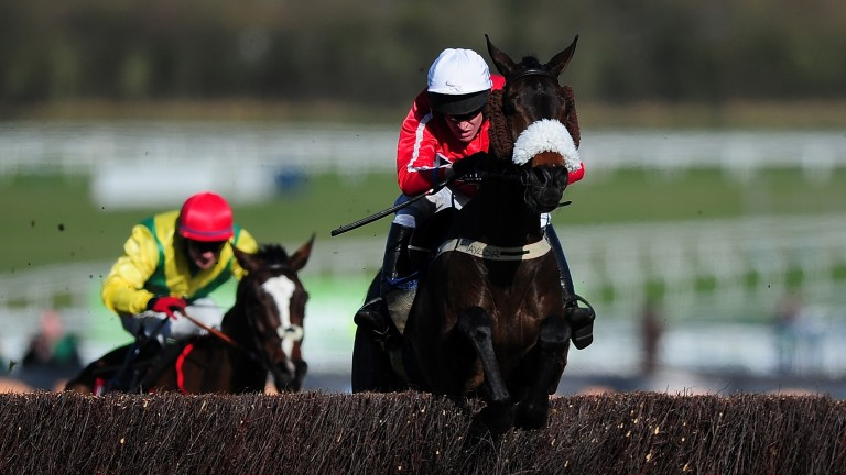 The Druids Nephew will be aiming to regain his title in the Ultima Handicap Chase on Tuesday