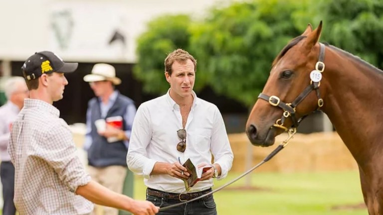 Andrew Williams: is a previous graduate of the Darley Flying Start programme