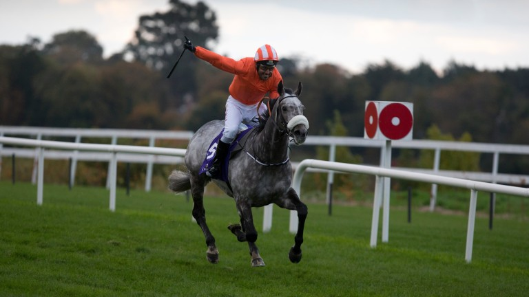 Labaik: won the Corinthian Challenge race at Leopardstown a year ago for Gordon Elliott and Sheikh Fahad Al Thani
