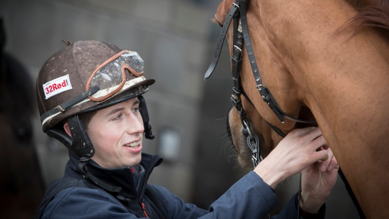 Tombstone with Brian Cooper at Gordon Elliott's Cullentra House Stables