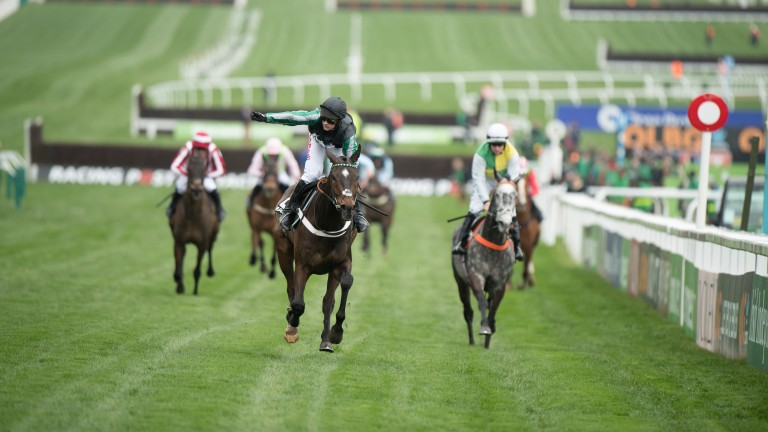 Nico de Boinville celebrates as Altior returns triumphant in the Racing Post Arkle at Cheltenham