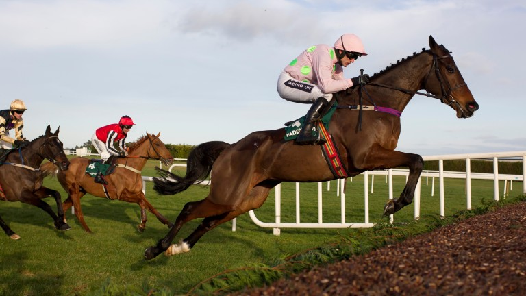 Douvan can make it 14 out of 14 since moving from France in the Champion Chase