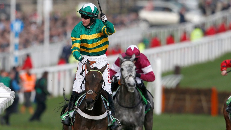 Petit Mouchoir (purple) comes home third behind Buveur D'Air in the Champion Hurdle with a performance that pleased his trainer