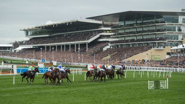 Cheltenham: conditions continued to dry out at the track