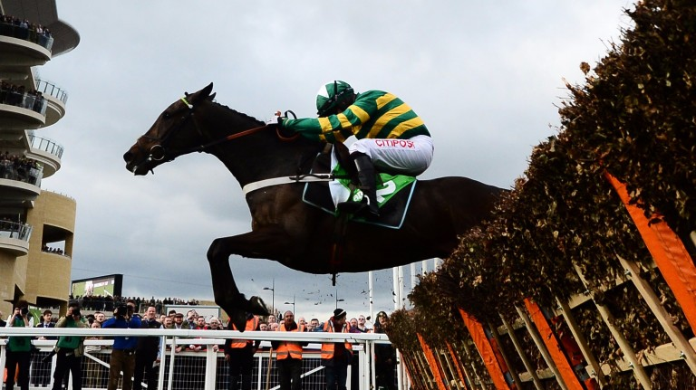 Buveur D'Air and Noel Fehily take the last on the way to victory in the Champion Hurdle