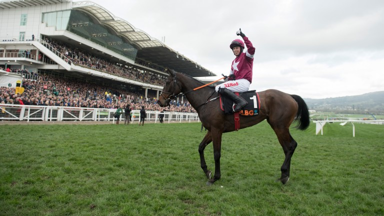 Apple's Jade: Grade 1 winner at the Cheltenham Festival in March