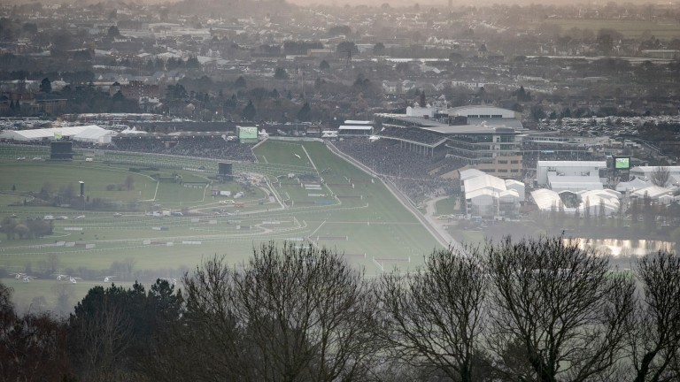 Cheltenham: the scene from Cleeve Hill at the end of the first day