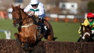 Baron Alco: in winning form at Plumpton in January to qualify for a £60,000 bonus tilt at Cheltenham