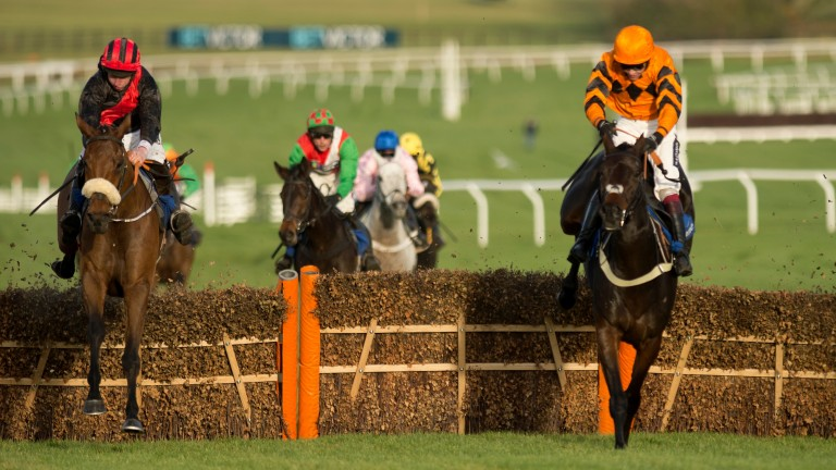 Peregrine Run (Roger Loughran,left) jumps the final flight with West Approach (centre) and Wholestone in the Hyde novices hurdleCheltenham 11.11.16 Pic: Edward Whitaker