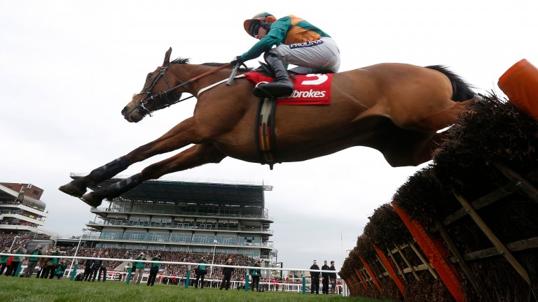 COLE HARDEN and Gavin Sheehan win the World Hurdle at Cheltenham 12/3/15 Photograph by GROSSICK RACING 07710461723