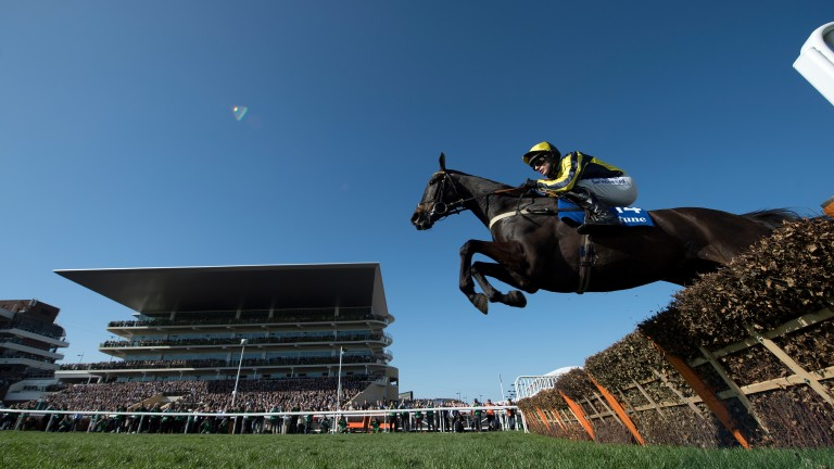 Willoughby Court pings a hurdle on his way to victory at Cheltenham