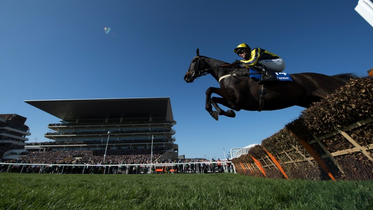 Willoughby Court: on his way to victory in the Neptune Novices' Hurdle at the 2017 Cheltenham Festival