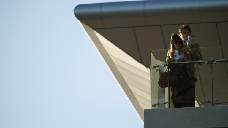 Vantage point: a racegoer finds the perfect spot to watch the action unfold in the Fred Winter