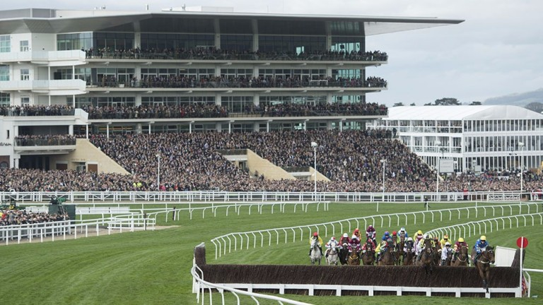Cheltenham: track's first meeting of the season looks a belter