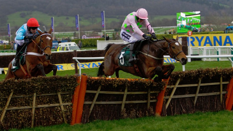 Let's Dance reaches for the final flight on the way to victory in the Mares' Novices' Hurdle