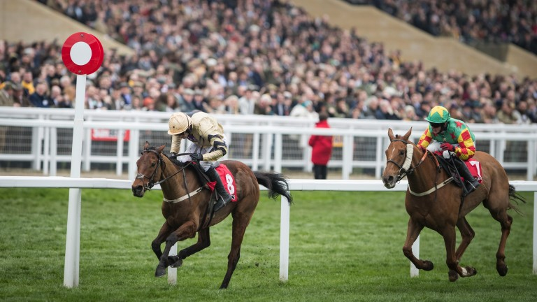 Stayers' Hurdle hero: Nichols Canyon (left) stays on strongly under Ruby Walsh to bag the day-three feature
