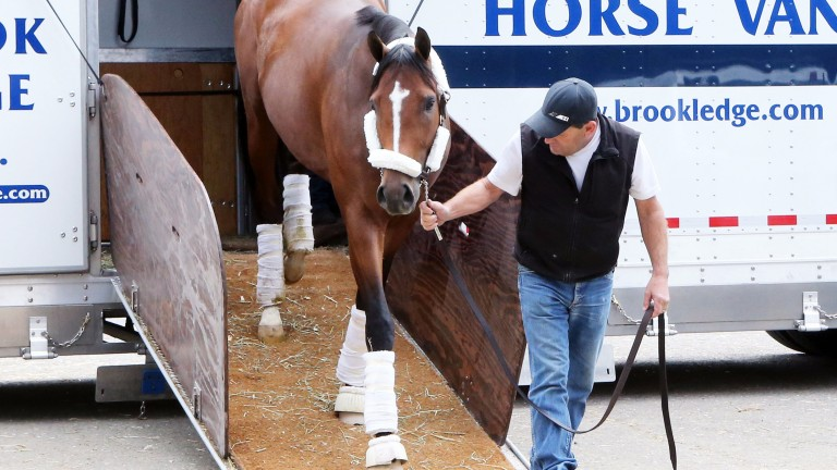 American Anthem arrives at Oaklawn Park for the Rebel Stakes