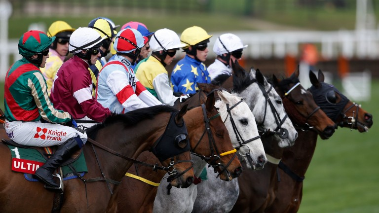 Runners line up at the start for the Ultima Handicap Chase