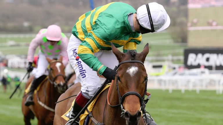 DEFI DU SEUIL Ridden by Richard Johnson wins at Cheltenham 17/3/17Photograph by Grossick Racing Photography 0771 046 1723