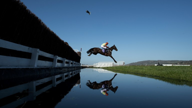 Might Bite and Nico de Boinville soar across the water jump on their way to victory in the RSA Chase