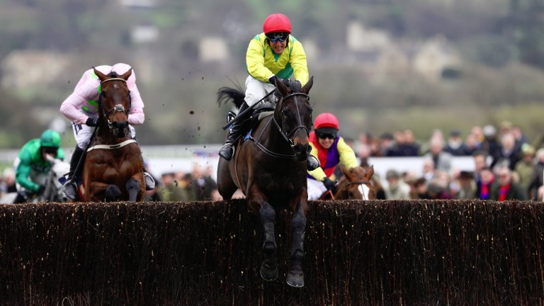 CHELTENHAM, ENGLAND - MARCH 17:  Sizing John is steered to victory by Robbie Power in the Timico Cheltenham Gold Cup Chase during Gold Cup Day on day four of the Cheltenham Festival at Cheltenham Racecourse on March 17, 2017 in Cheltenham, England.  (Phot