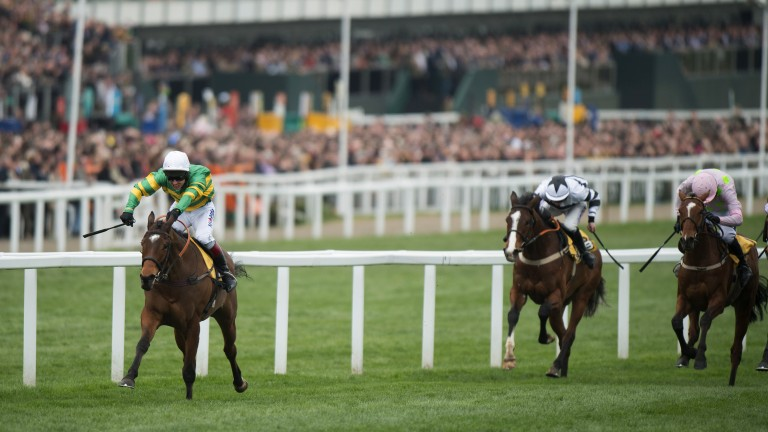 Class of his own: Defi Du Seuil and Richard Johnson win the Triumph Hurdle in effortless style
