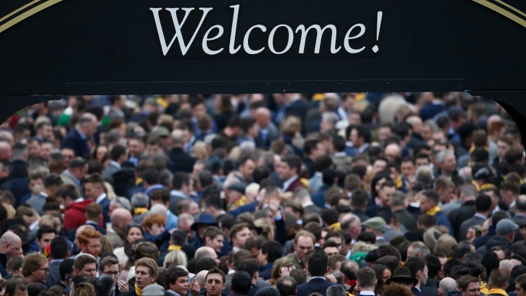 Packed to the rafters: the Guinness Village is rammed as punters enjoy themselves on St Patrick's Day