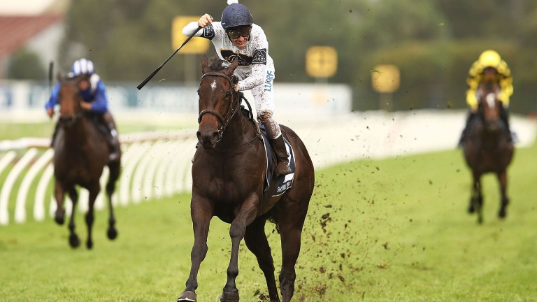 She Will Reign: wins the Golden Slipper at Rosehill on Saturday