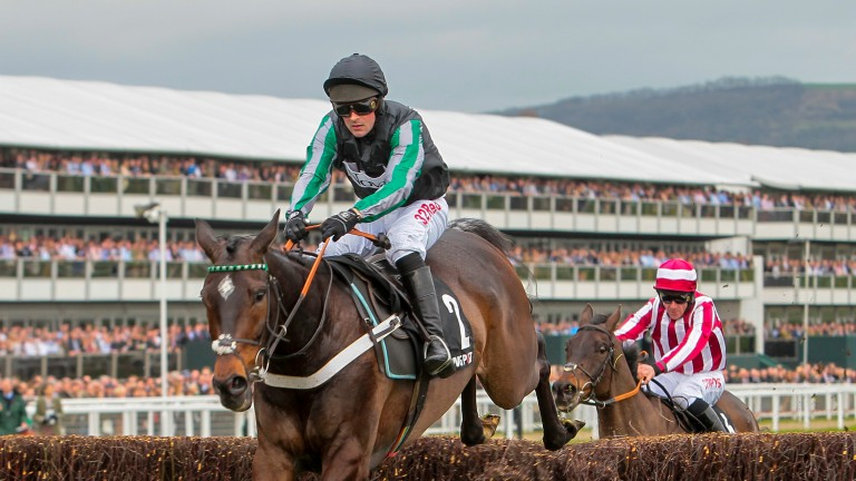 Altior: is by the late High Chaparral, a son of Sadler's Wells
