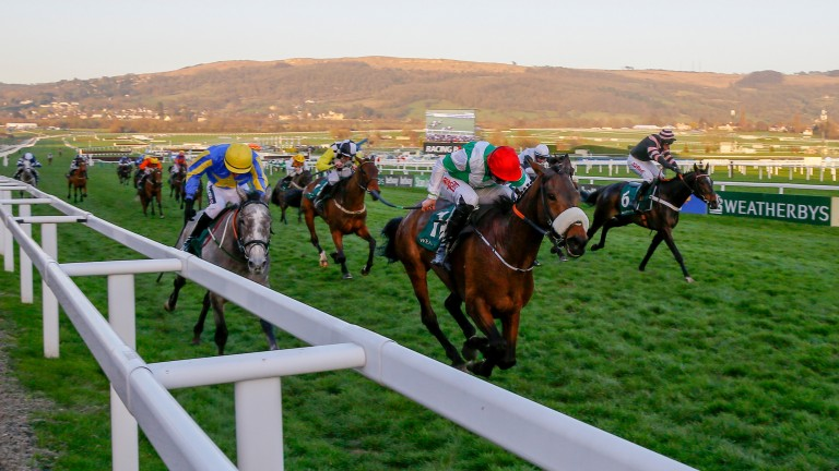 Fayonagh: Champion Bumper winner can dominate the mares' division