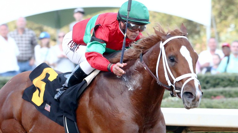 Malagacy (Javier Castellano) strikes for home in the Grade 2 Rebel Stakes at Oaklawn Park on Saturday