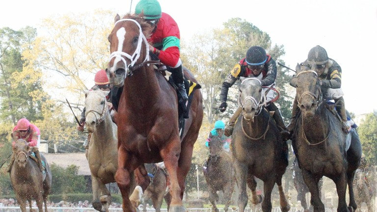 Malagacy (Javier Castellano, green cap) draws away to win the Rebel Stakes