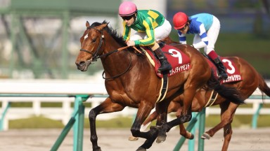 Satono Diamond (Christophe Lemaire) beats Cheval Grand to win the Grade 2 Hanshin Daishoten