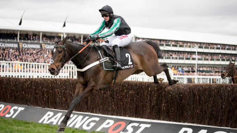 Altior and Nico de Boinville taking the last fence when winning the Racing Post Arkle Challenge Trophy Novices' Chase.Cheltenham Festival.Photo:Patrick McCann 14.03.2017