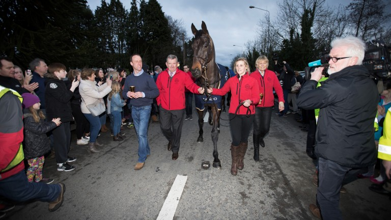 Ears pricked: Sizing John appears in good form as he is paraded in front of the crowd