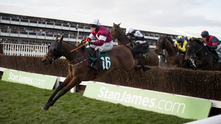 Tiger Roll: gave Lisa O'Neill a first Cheltenham Festival winner