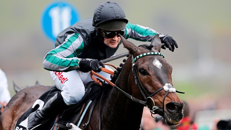 Altior: could yet make his reappearance in the Game Spirit Chase at Newbury