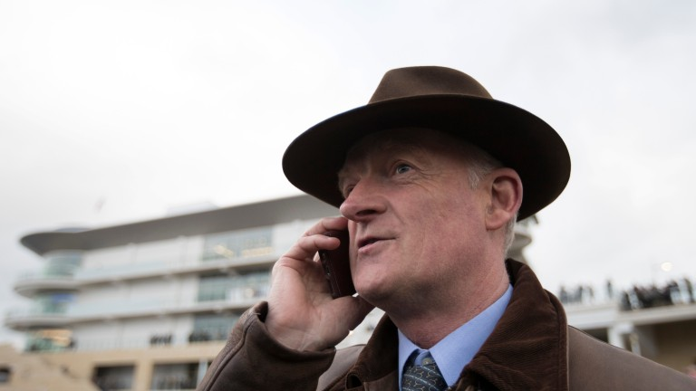 Willie Mullins: hoping for another successful French raid